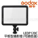 GODOX 神牛 LEDP120C 平板型攝影燈 (6期0利率 免運 開年公司貨) 可調色溫 LED 120 雙色錄影燈 116顆燈珠