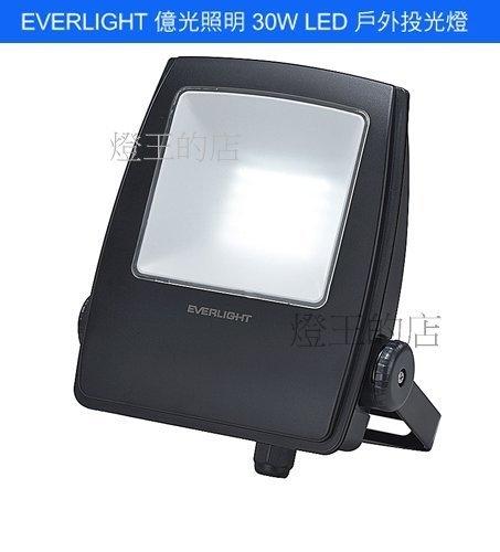 【燈王的店】億光 星宇 戶外防水 LED 30W 投射燈 全電壓 (白光/黃光) ☆ FAP-30W