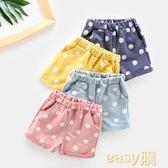 女寶寶褲子夏兒童外穿褲純棉五分褲夏裝薄款童裝男童女童短褲夏季
