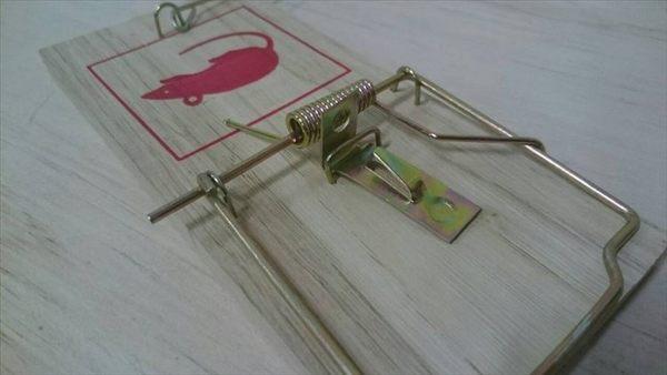 【八八八】e網購~【老鼠夾板09-60-1】捕鼠器 捕鼠夾 老鼠板 捕鼠器 老鼠夾 夾鼠板 捕鼠板 陷阱夾