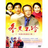 大陸劇 - 冬天不冷DVD (全22集) 王剛/廖學秋/楊立新