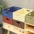 編織收納筐桌面玩具雜物零食收納盒儲物籃藤編草編框【小獅子】