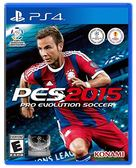PS4 世界足球競賽 2015(美版代購)