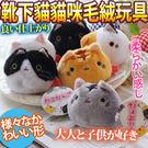 【zoo寵物商城】DYY》靴下喵星人貓咪...