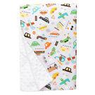 美國 Baby Elephant Ear 親膚毛毯/冷氣毯/防風毯/毯子(68x74cm)-噗噗小車