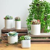 仿真多肉盆栽 陶瓷花盆裝飾品 絨毛寶石蓮主題植物擺件 art007  HM 居家物語