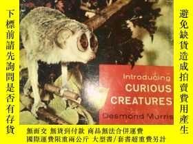 二手書博民逛書店Introducing罕見CURIOUS CREATURES引入好奇的生物Y3359 Pleasure Lt