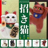 全套6款【日本正版】招財貓 杯緣子 貓咪 扭蛋 轉蛋 擺飾 奇譚 KITAN PUTITTO - 177196