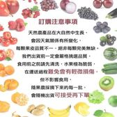 【WANG-全省免運】台灣頂級中顆枇杷原裝禮盒X3盒(18顆/盒 每盒約500g±10%含盒重)