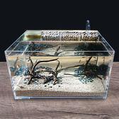Z-創意生態魚缸亞克力烏龜缸小型水龜缸客廳水陸造景缸帶過濾免換水
