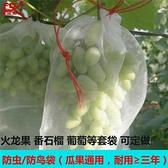 防鳥網 尼龍網袋火龍果套袋專用套果袋葡萄套袋水果套袋防果蠅防蟲防鳥袋 美物 交換禮物