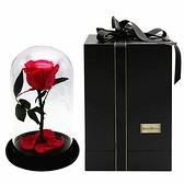 永生花紅玫瑰-保鮮花浪漫情人節生日禮物玫瑰花73pp402【時尚巴黎】