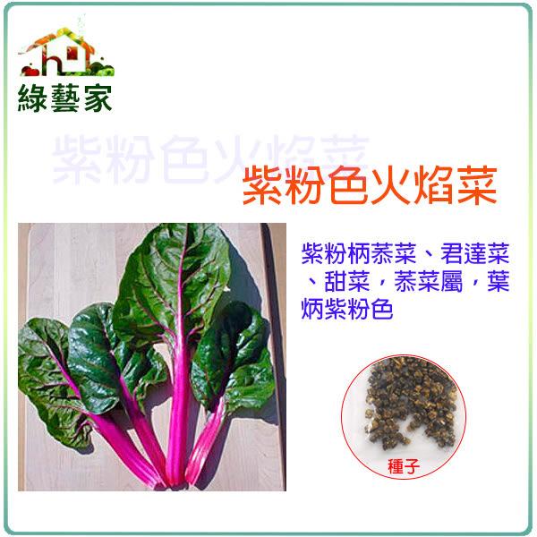 【綠藝家】大包裝A80.紫粉色火焰菜種子30克 (約1800顆)