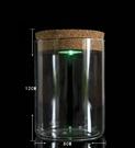 發光許願瓶,圓柱軟木塞玻璃瓶帶七彩燈