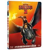 馴龍高手2 (UHD+BD)How to Train Your Dragon2 (UHD+BD)