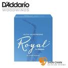 美國 RICO ROYAL 中音 薩克斯風竹片 3號 Alto Sax (10片/盒)