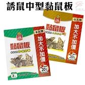 金德恩 台灣製造 1盒2片 誘鼠中型黏鼠板/多款可選/奶香/土豆香