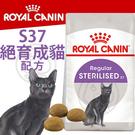 此商品48小時內快速出貨》FHN 新皇家飼料《絕育成貓S37》2kg