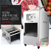 立式切肉機 電動切丁切絲切片機不銹鋼加厚全自動切肉片機(220V)  汪喵百貨