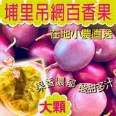 【在地小農】埔里吊網百香果-大顆(5斤/箱)