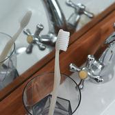 Classic潔牙刷 (淺灰 米黃)-生活工場