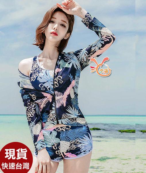 泳衣來福,C980泳衣花蝶三件式泳衣游泳衣泳裝比基尼泳衣M-XL正品,售價980元