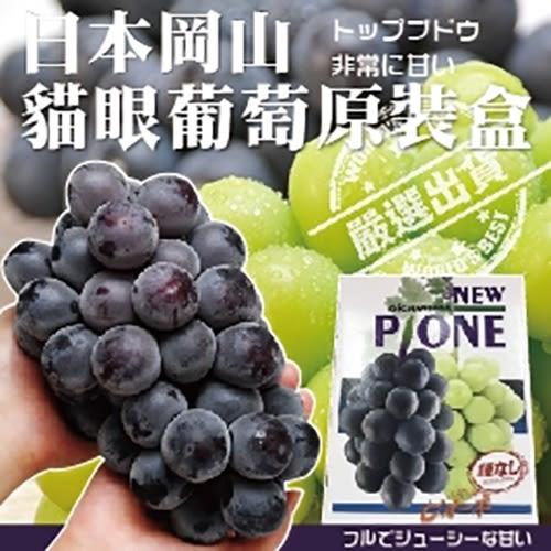 日本岡山貓眼葡萄