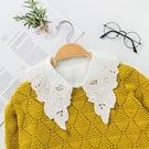 假領子 雪紡紗上衣誇張尖領氣質浪漫蕾絲領子尖領韓版針織衫洋裝滿額送愛康衛生棉[E30271] 預購