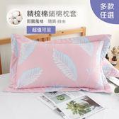 R.Q.POLO 精梳棉 鋪棉歐式枕頭套-1付 (多款花色)