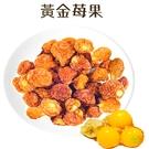 黃金莓果乾-飛莎栗100G~黃金燈籠果乾