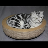 窩型貓抓板耐磨圓形瓦楞紙貓窩磨爪器碗型劍麻貓爬架貓樹實木ATF 青木鋪子