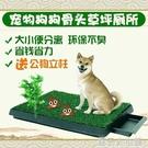 狗狗尿盆寵物廁所狗廁所自動沖水引便器狗狗撒尿拉屎神器草坪便盆 錢夫人小鋪