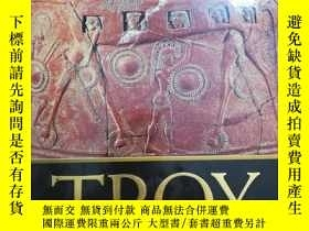 二手書博民逛書店Troy:罕見The Myth and Reality Behind the Epic Legend(為避免爭議,