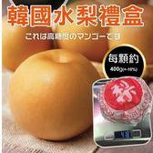 【WANG-全省免運】韓國特大XL甜潤水梨禮盒X1盒(6顆/盒 每顆約400g±10%)
