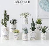 多肉仿真植物裝飾假花小擺件室內客廳—交換禮物