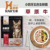 【毛麻吉寵物舖】HyperrRAW超躍 小豹牙五色生鮮餐 草原牛口味 1公斤(200克*5替代)