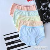 5條獨立裝日繫內褲女式棉襠中腰內褲女生旅游生理內褲不易掉色   傑克型男館