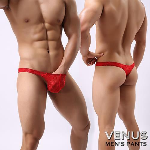 蘇菲24H購物 VENUS 蕾絲 性感情趣 透明男丁字褲 紅