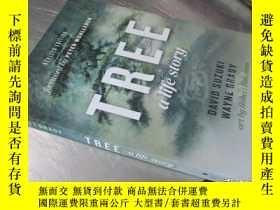 二手書博民逛書店Tree:罕見A Life Story Paperback – Illustrated【32開 英文原版】Y1