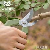 園藝剪刀進口鋼修枝剪園藝工具家庭盆栽果樹修枝剪刀 QQ25253『MG大尺碼』