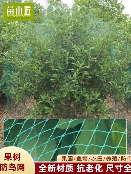 防鳥網 防鳥網戶外大棚果園櫻桃樹魚塘果樹防護種植用網罩紗網葡萄菜園 8號店