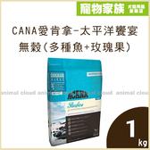 寵物家族-ACANA愛肯拿-太平洋饗宴挑嘴貓無穀配方(多種魚+玫瑰果)1kg
