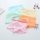 小兔印花女童平口內褲 (5件一組) 橘魔法Baby magic 現貨  童裝 兒童 大童