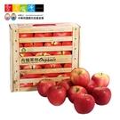 【愛不囉嗦】陽光國際 有機富士蘋果禮盒 ( 9粒裝 )