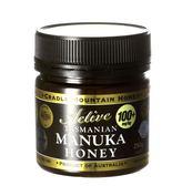 澳洲塔斯馬尼亞麥蘆卡蜂蜜100+ 250g【朗沛柔】