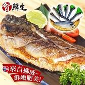 【南紡購物中心】賀鮮生-大size挪威薄鹽鯖魚12片(190g/片)