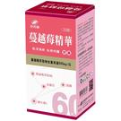 港香蘭 蔓越莓精華膠囊 0.5g x 60粒 【瑞昌藥局】私密保健 女性夏日必備