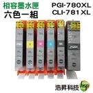 【超值組合B 六色一組】HSP PGI-780XL+CLI-781XL 高容量相容墨水匣 適用TS8170