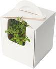 素面手提盆栽盒(20入/組) 禮品包裝/彌月禮盒/畢業禮物/婚禮小物/手工餅干/手工蠟燭