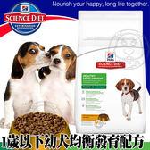 【zoo寵物商城】美國Hills希爾思》幼犬均衡發育原顆粒雞肉大麥15kg33.06磅/包